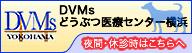 DVMsどうぶつ診療センター横浜 救急診療センター