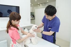 獣医師による健康チェック